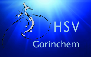 LogoHSV